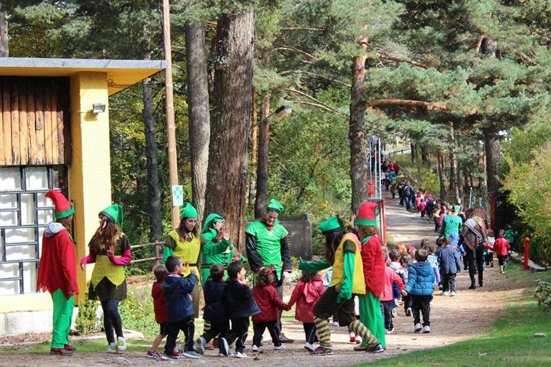 actividades-bosque-sendero