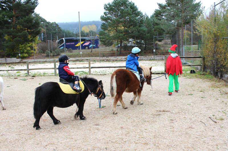 actividades-caballos